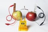 Fruit-powered Clock Fotografisk tryk af Friedrich Saurer