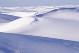White Sand Dunes Poster by Alan Sirulnikoff
