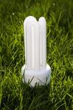 Energy Efficient Light Bulb Photographic Print by Paul Rapson
