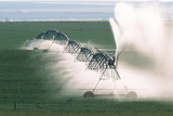 Agricultural Irrigation Photographic Print by Alan Sirulnikoff