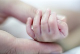 Premature Baby's Hand Posters by Science Photo Library