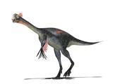 Einiosaurus Dinosaur, Artwork Prints by Friedrich Saurer