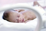 Premature Baby Posters by Science Photo Library