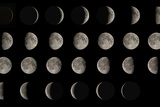 Phases of the Moon Poster by Eckhard Slawik
