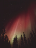 Aurora Borealis Photographic Print by Alan Sirulnikoff