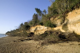 Coastal Erosion Photographic Print by Paul Rapson