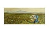 La Primavera Giclee Print by Walter Crane
