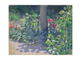 Study of Poppies in the Garden, 1894 Giclee Print by Viktor Elpidiforovich Borisov-musatov