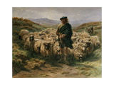The Highland Shepherd, Watercolour Giclee Print by Rosa Bonheur