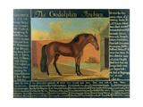 The Godolphin Arabian Giclee Print by Daniel Quigley