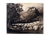 The Flock and the Star Impression giclée par Samuel Palmer