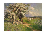 Sheep and Cattle in a Landscape Giclee Print by Arthur Walker Redgate