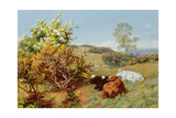 In the Nower, Dorking Giclee Print by Charles Collins