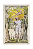 Frontispiece to Songs of Innocence: Plate 1 from Songs of Innocence and of Experience C.1802-08 Giclée-Druck von William Blake