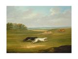 Running, a Coursing Scene, 1816 Giclee Print by John Nott Sartorius