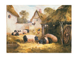 Cottage Hospitality Giclee Print by William Collins