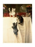 Cats Giclee Print by William Henry Hamilton Trood
