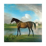Lord Bolingbroke's Brood Mare in the Grounds of Lydiard Park, Wiltshire, C.1764-66 Lámina giclée por George Stubbs