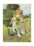 Girls Herding Geese Giclee Print by Henry John Yeend King