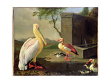 Oriental Birds Giclee Print by Adrian Coorte