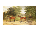 Two Horses, Harnessed in Tandem, Pulling a Carriage, 1883 Giclee Print by Benjamin Cam Norton