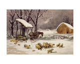 Sheep in Winter Giclee Print by John Frederick Herring Jnr