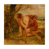 Narcissus Giclee Print by Peter Paul Rubens