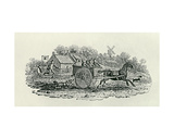 Runaway Cart from 'Land Birds, C. 1797 Giclee Print by Thomas Bewick