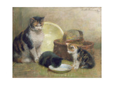 Cat and Kittens, 1889 Giclee Print by Walter Frederick Osborne