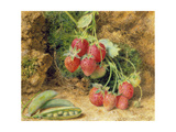 Strawberries and Peas Giclee Print by John Sherrin