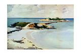 Gallows Island Stampa giclée di Winslow Homer