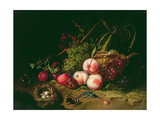 Still Life with Fruit Giclee Print by Rachel Ruysch