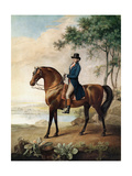 Warren Hastings Esq. on His Arabian Horse, after a Painting by George Stubbs, 1796 (1724-1806) Giclee Print by George Townley Stubbs