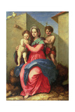 The Madonna and Child with the Infant St. John Giclee Print by Andrea del Sarto