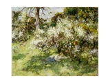 Sloe Blossom Giclee Print by William Stewart Macgeorge