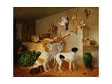 Inside the Game Pantry Giclee Print by Edmund Bristow