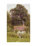 Cottage Near Brook, Witley, Surrey Giclee Print by Helen Allingham