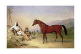 Two Bedouin with a Bay Arab Stallion in the Desert, 1860 Giclee Print by Abraham Cooper