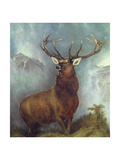 The Monarch of the Glen Giclee Print by William Widgery