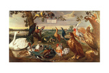 Various Birds Giclee Print by Frans Snyders Or Snijders