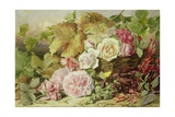 Peonies, Roses and Hollyhocks, 1862 Giclee Print by Mary Elizabeth Duffield