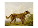 Man's Best Friend Giclee Print by Charles Towne