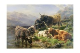 Highland Cattle Giclee Print by William Watson