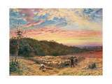 The Sheepfold - Morning in Autumn Giclee Print by James Thomas Linnell