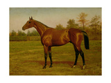 Isinglass, Triple Crown, 1893 Giclee Print by Harrington Bird