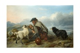 The Sick Lamb, 1853 Giclee Print by Richard Ansdell