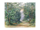 T1229 the Blue Mountains, Jamaica, 1879 Giclee Print by Admiral Sir Edward Augustus Inglefield