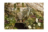 The Conservatory Giclee Print by W.C. Jarvis
