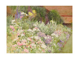 A Herbaceous Border Giclee Print by Hugh L. Norris