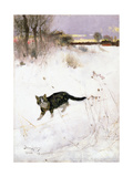 Cat Stalking over Snow, 1884 Giclee Print by Bruno Andreas Liljefors